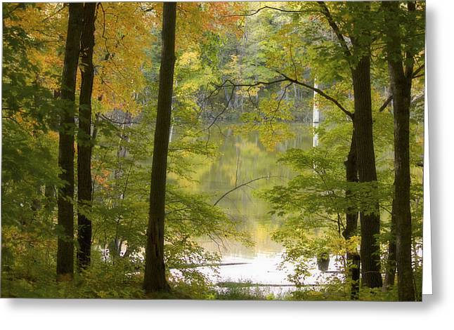 Magical Maplewood Greeting Card by Penny Meyers