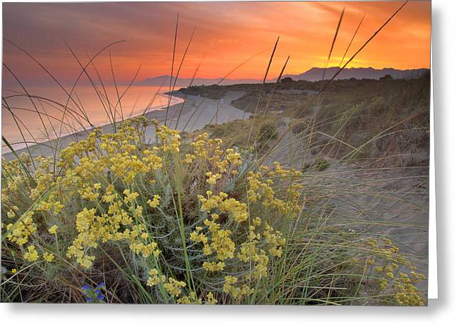 Blue Green Wave Greeting Cards - Magical red sunset Greeting Card by Guido Montanes Castillo
