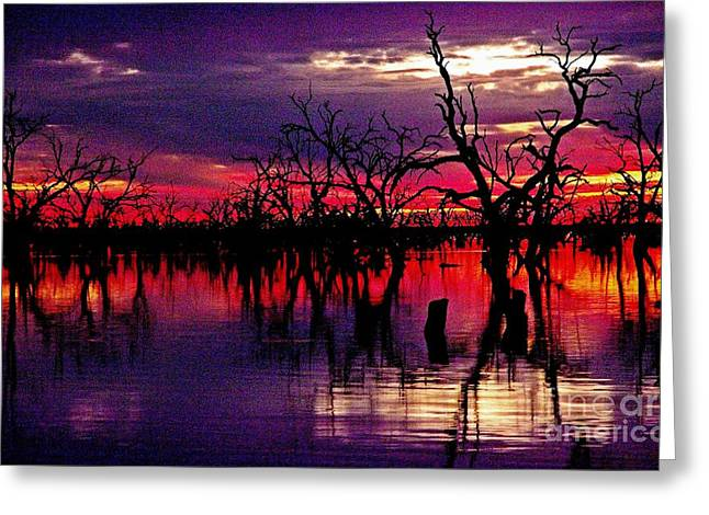 Magical Sunset Greeting Card by Blair Stuart