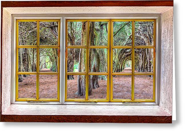Cabin Window Greeting Cards - Magical Trees Greeting Card by Semmick Photo