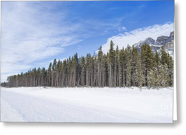 Banff Greeting Cards - Magnetic North Greeting Card by Evelina Kremsdorf