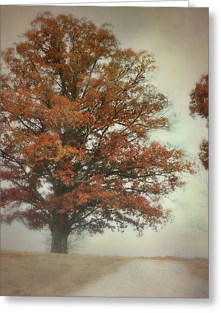 Autumn Scenes Greeting Cards - Magnificence - Foggy Autumn Scene Greeting Card by Jai Johnson