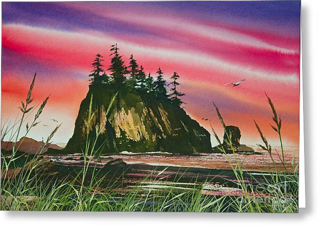 Sunset Greeting Cards Greeting Cards - Magnificent Coast Greeting Card by James Williamson