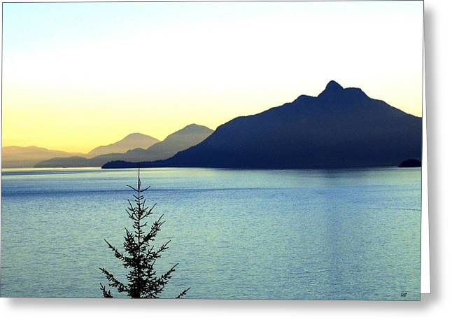 Spectacular Ocean Vistas Greeting Cards - Magnificent Howe Sound Greeting Card by Will Borden