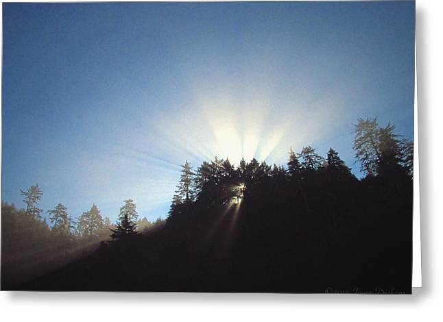 Magnificent Light Two Greeting Card by Joyce Dickens