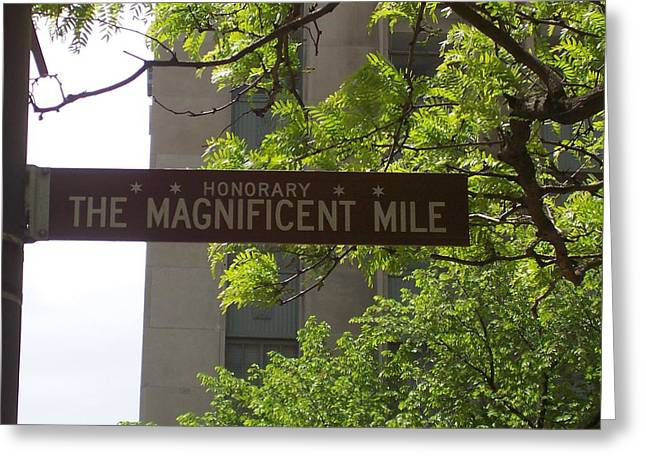 Magnificent Mile Greeting Cards - Magnificent Mile Greeting Card by Mary Baka