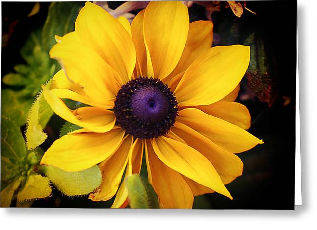 Green And Yellow Greeting Cards - Magnificent Nature Greeting Card by Milena Ilieva