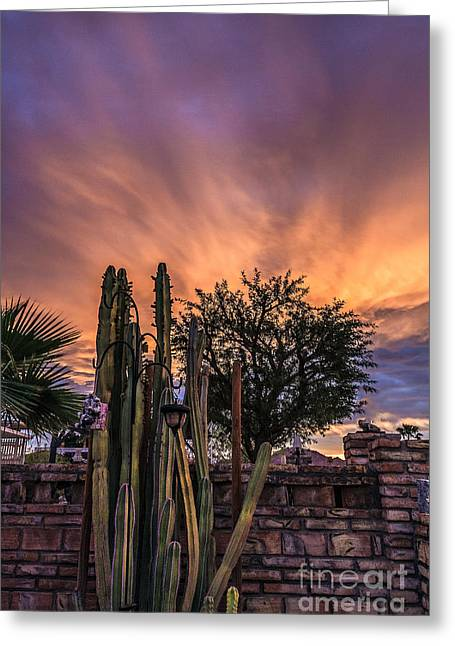 Bale Greeting Cards - Magnificent Sunrise Greeting Card by Robert Bales