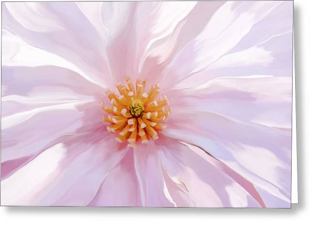 Recently Sold -  - Floral Digital Art Greeting Cards - Magnolia Bloom - Digital Art Greeting Card by Sharon Norman