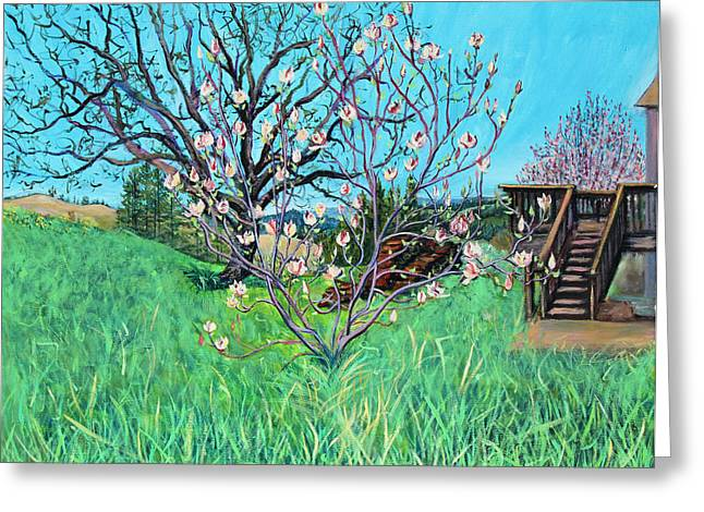 Sonoma County Paintings Greeting Cards - Magnolia Blooming at the Farm Greeting Card by Asha Carolyn Young