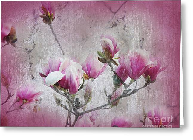 Design With Photography Greeting Cards - Magnolia Blossoms With Tinted Edge Greeting Card by Andee Design