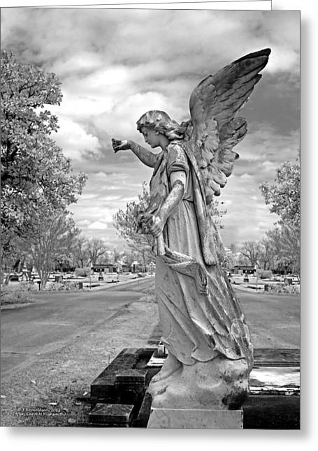 Spirits Photographs Greeting Cards - Magnolia Cemetery in Mobile Alabama Greeting Card by Terry Reynoldson