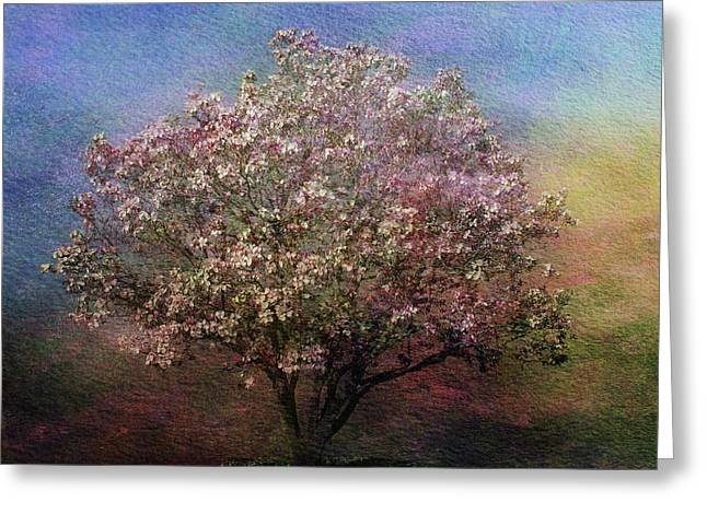 Magnolia Tree In Bloom Greeting Card by Sandy Keeton