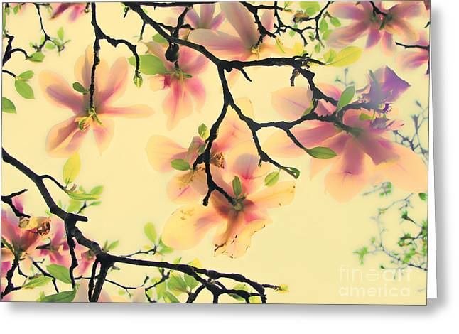 Phantasie Greeting Cards - Magnoliart in apricot and light green Greeting Card by Die Farbenfluesterin