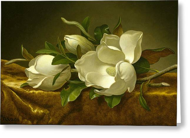 Egg Sculpture Greeting Cards - Magnolias on Gold Velvet Cloth Greeting Card by Martin Johnson Heade
