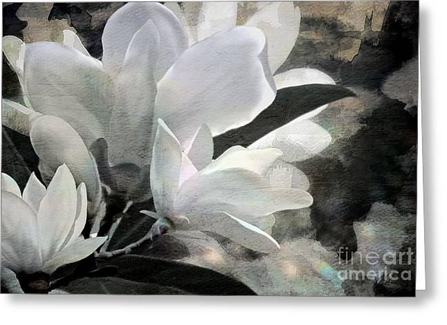 Medium Flowers Greeting Cards - Magnolias Greeting Card by Shanina Conway