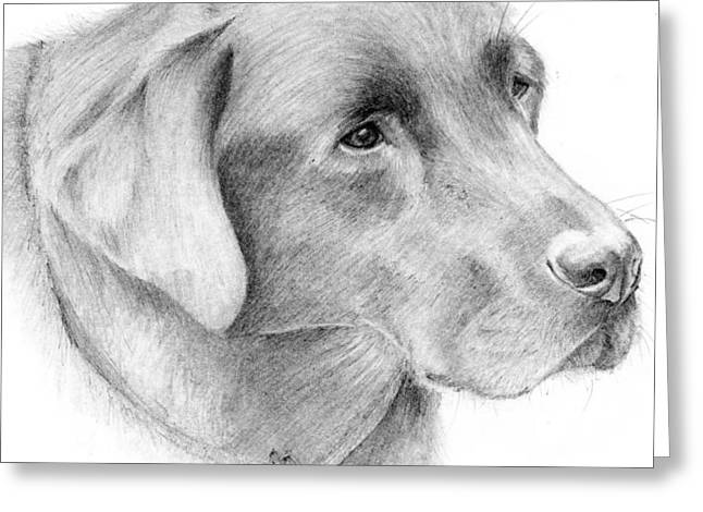 Mary Mayes Greeting Cards - Magnus Greeting Card by Mary Mayes