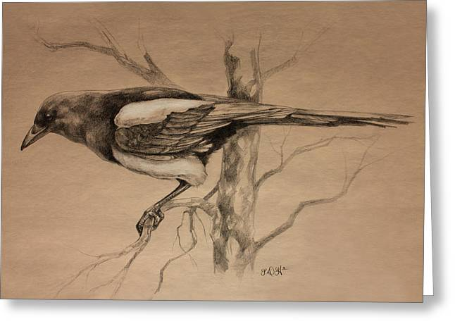 Magpie Greeting Cards - Magpie sketch Greeting Card by Derrick Higgins