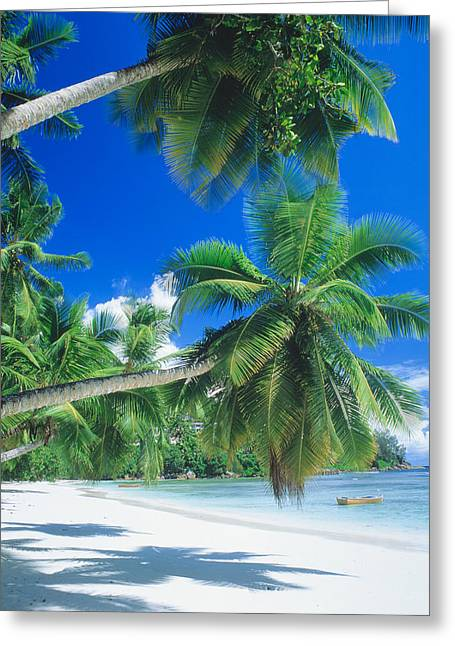 Skiff Greeting Cards - Mahe Seychelles Greeting Card by Panoramic Images