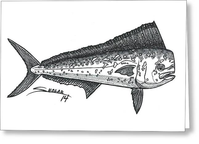 Ink Drawing Greeting Cards - Mahi Greeting Card by Alex Sholar