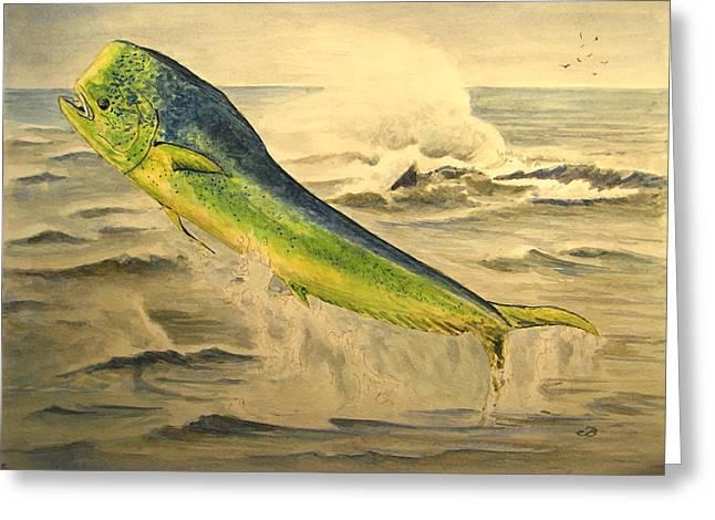 Hawaiian Fish Greeting Cards - Mahi mahi Greeting Card by Juan  Bosco