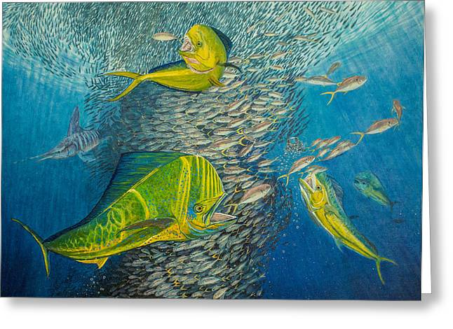 Striped Marlin Greeting Cards - Mahi Mahi original oil painting 24x30in Greeting Card by Manuel Lopez