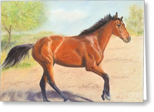 Mahogany Pastels Greeting Cards - Mahogany Bay Horse in Pastel Greeting Card by Kate Sumners