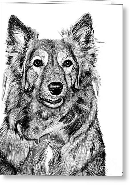 Maia Greeting Cards - Maia -- Digital Charcoal Portrait Greeting Card by Jacqueline Barden