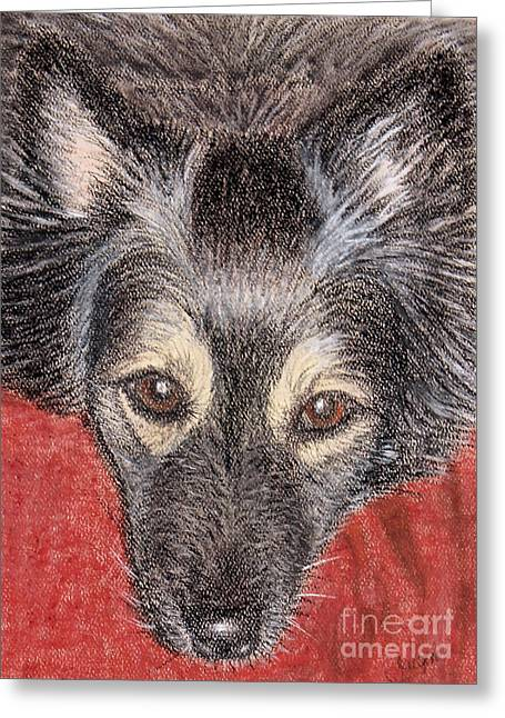 Shiny Pastels Greeting Cards - Maia Portrait Pastel Greeting Card by Jacqueline Barden