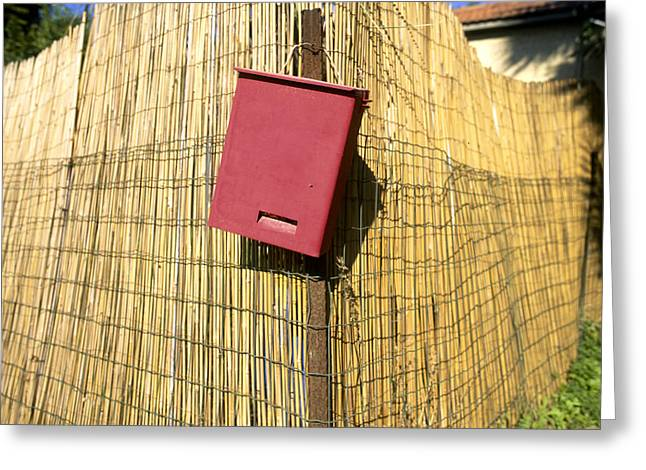 Bamboo Fence Greeting Cards - Mail Box on Bamboo fence Greeting Card by Daniel Blatt