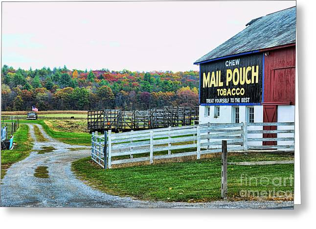 Old Country Roads Greeting Cards - Mail Pouch Tobacco Barn in the Fall Greeting Card by Paul Ward