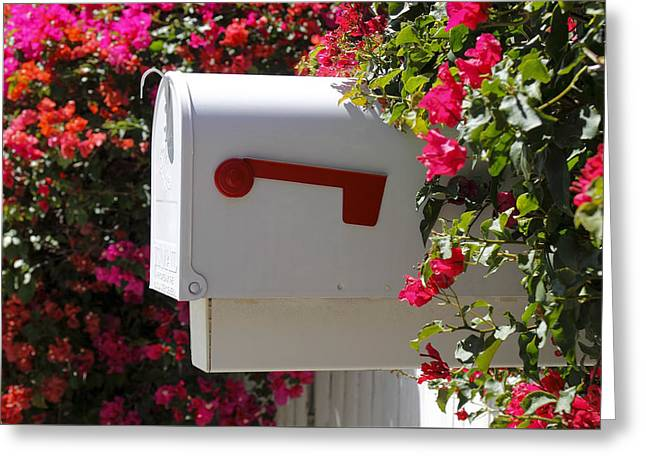 Mailbox Greeting Card by Rudy Umans