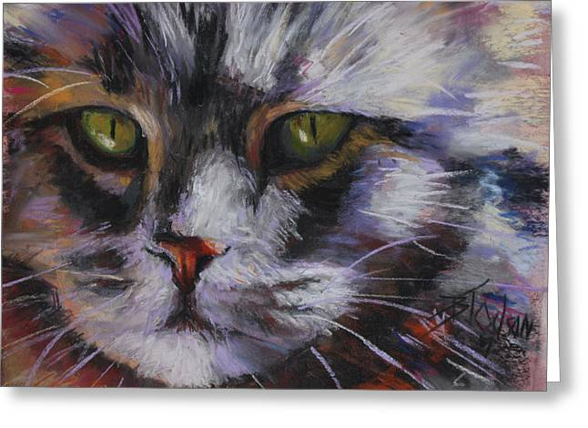 Close Up Pastels Greeting Cards - Main Coon Greeting Card by Billie Colson