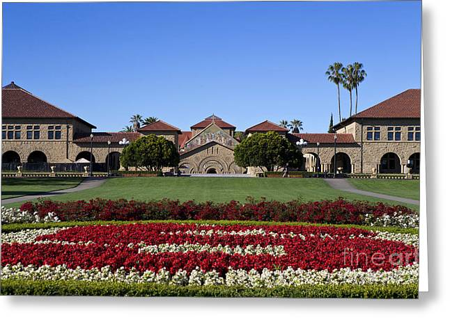 Main Quad Stanford California Greeting Card by Jason O Watson