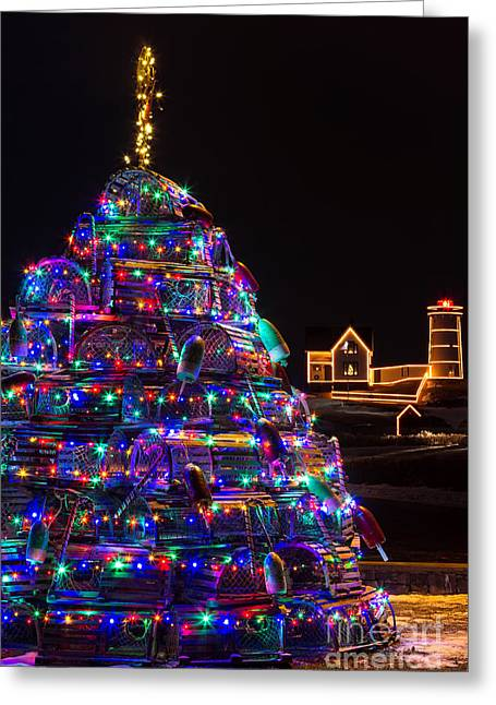 Sohier Park Greeting Cards - Maine Christmas Tree Cape Neddick Lighthouse Greeting Card by Dawna  Moore Photography