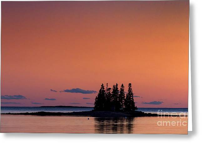 Maine Coastal Island Greeting Card by John Greim
