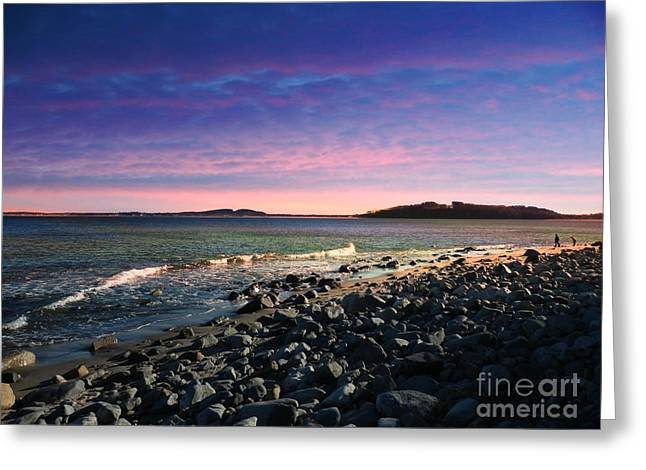 Maine Spring Greeting Cards - Maine Coastline #1 Greeting Card by Marcia Lee Jones