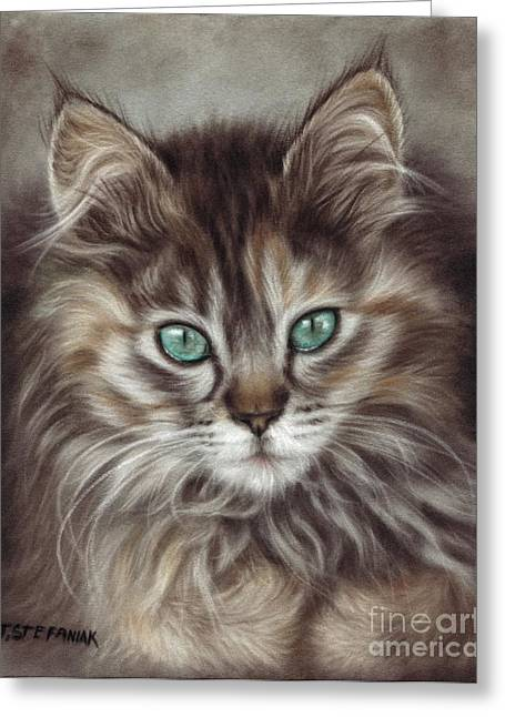 Maine Pastels Greeting Cards - Maine coon Greeting Card by Tobiasz Stefaniak
