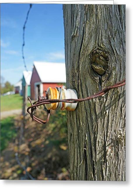 Maine Farms Greeting Cards - Maine electric fence Greeting Card by Melissa C