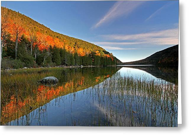 Maine Fall Foliage Glory At Bubble Pond  Greeting Card by Juergen Roth