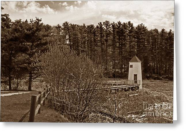 Maine Beach Greeting Cards - Maine In Sepia Greeting Card by Skip Willits