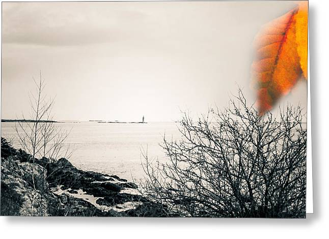 Winter In Maine Greeting Cards - Maine Morning Memories Greeting Card by Debashish Samaddar