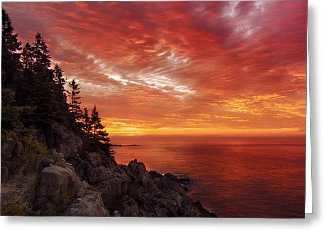 Maine's Bold Coast Greeting Card by Chad Tracy