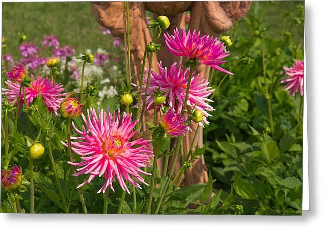 Majenta Greeting Cards - Majenta Flowers Greeting Card by AMB Fine Art Photography