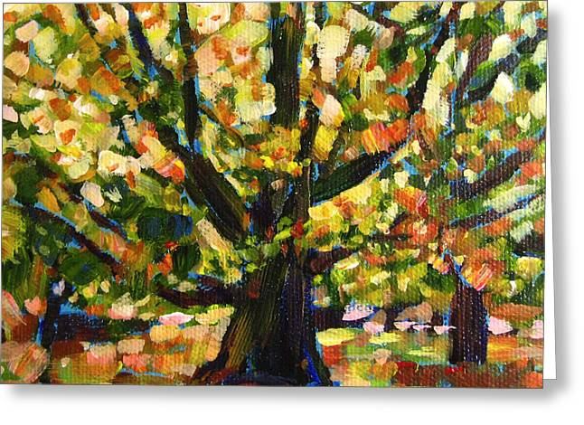 Robie Benve Greeting Cards - Majestic and Colorful Tree Greeting Card by Robie Benve