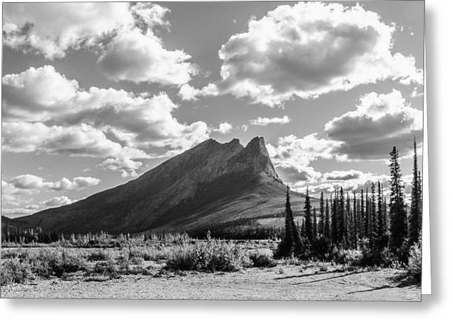 Majestic Drive Greeting Card by Chad Dutson