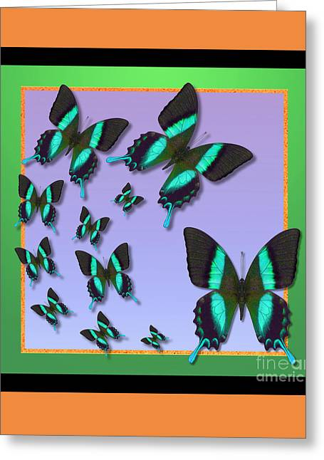 Lepidopterist Greeting Cards - Majestic Green Swallowtail Butterflies Greeting Card by Melissa A Benson