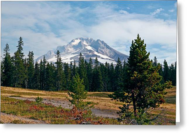 Sking Greeting Cards - Majestic Mt. Hood In Oregon Greeting Card by Athena Mckinzie
