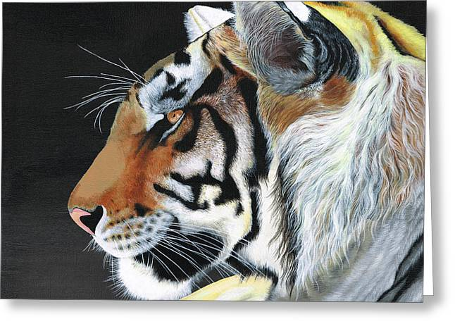 Tiger Greeting Cards - Majestic Tiger Greeting Card by Heather Bradley