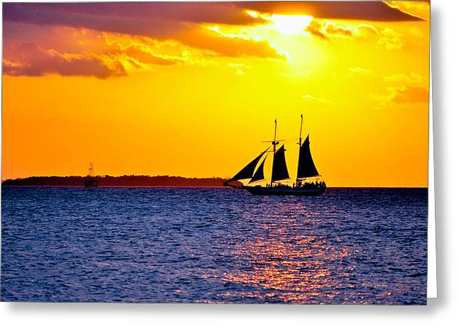 Florida Keys Greeting Cards - Majestic Greeting Card by Vaughn Garner